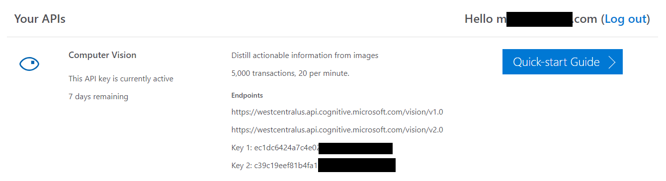 computer%20vision%20API%20example.png
